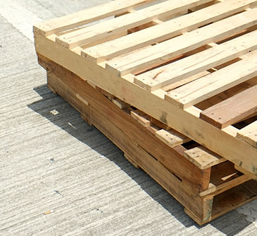 Pallet Repairs Service